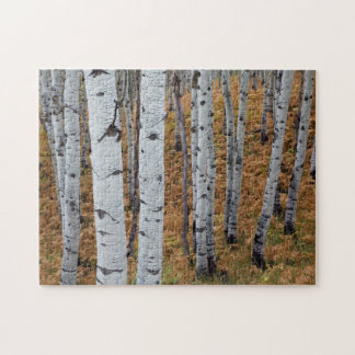 USA, Utah, Uinta-Wasatch-Cache National Forest 2 Puzzle