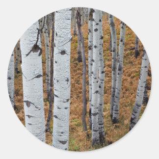 USA, Utah, Uinta-Wasatch-Cache National Forest 2 Round Sticker
