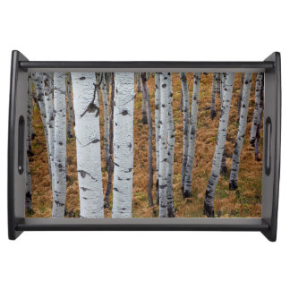 USA, Utah, Uinta-Wasatch-Cache National Forest 2 Serving Tray