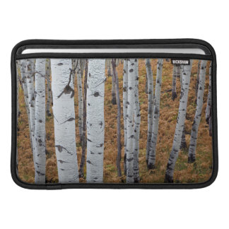 USA, Utah, Uinta-Wasatch-Cache National Forest 2 Sleeves For MacBook Air