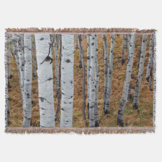 USA, Utah, Uinta-Wasatch-Cache National Forest 2 Throw Blanket