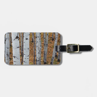 USA, Utah, Uinta-Wasatch-Cache National Forest 2 Travel Bag Tag