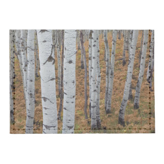 USA, Utah, Uinta-Wasatch-Cache National Forest 2 Tyvek® Card Wallet