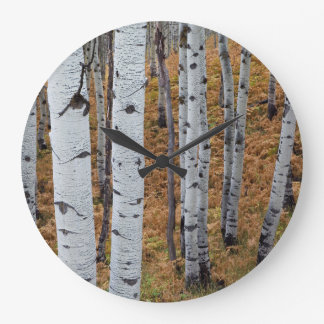USA, Utah, Uinta-Wasatch-Cache National Forest 2 Wall Clocks