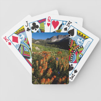 USA, Utah, Uinta-Wasatch-Cache National Forest Bicycle Playing Cards