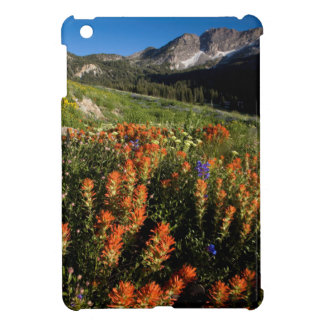 USA, Utah, Uinta-Wasatch-Cache National Forest iPad Mini Cover
