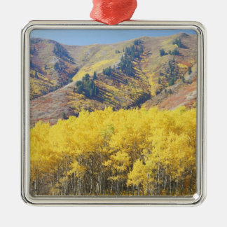 USA, Utah, Wasatch-Cache National Forest, Christmas Ornament