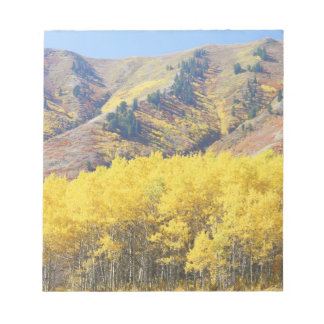 USA, Utah, Wasatch-Cache National Forest, Notepad