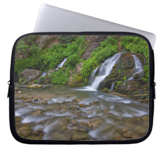 USA, Utah, Zion National Park.  Big Springs in Laptop Sleeve