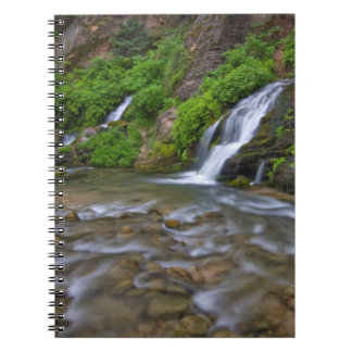 USA, Utah, Zion National Park.  Big Springs in Notebook