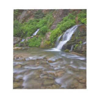 USA, Utah, Zion National Park.  Big Springs in Notepad