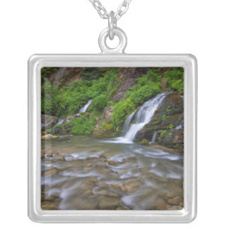 USA, Utah, Zion National Park.  Big Springs in Silver Plated Necklace