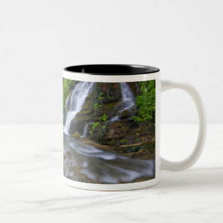 USA, Utah, Zion National Park.  Big Springs in Two-Tone Coffee Mug