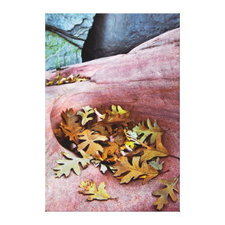 USA, Utah, Zion National Park. Gambel oak leaves Canvas Print