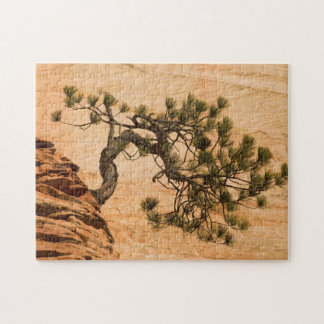 USA, Utah, Zion National Park. Pine tree Jigsaw Puzzle