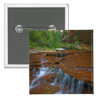 USA, Utah, Zion National Park. Scenic from 15 Cm Square Badge