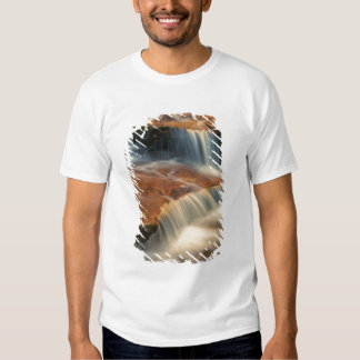 USA, Utah, Zion National Park. Scenic from 2 T-shirts