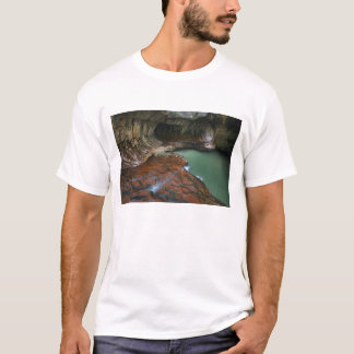 USA, Utah, Zion National Park. Scenic from 3 T-Shirt