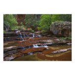 USA, Utah, Zion National Park. Scenic from 4 Photo Art
