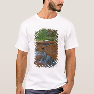 USA, Utah, Zion National Park. Scenic from T-Shirt
