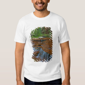 USA, Utah, Zion National Park. Scenic from Tee Shirts