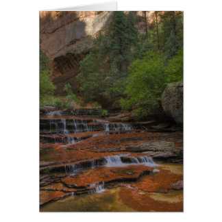 USA, Utah, Zion National Park.  Scenic from the Card