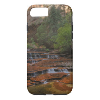 USA, Utah, Zion National Park.  Scenic from the iPhone 8/7 Case