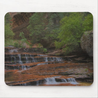 USA, Utah, Zion National Park.  Scenic from the Mouse Mat
