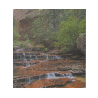 USA, Utah, Zion National Park.  Scenic from the Notepad