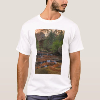 USA, Utah, Zion National Park.  Scenic from the T-Shirt