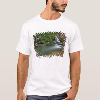 USA, Utah, Zion National Park. The Virgin T-Shirt