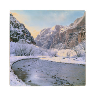 USA, Utah, Zion NP. New snow covers the canyon Wood Coaster