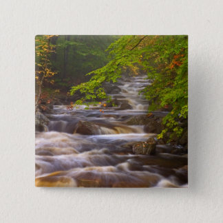 USA, Vermont, East Arlington, Flowing streams 15 Cm Square Badge