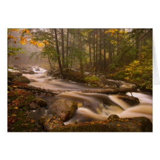 USA, Vermont, East Arlington, Flowing streams 2 Card
