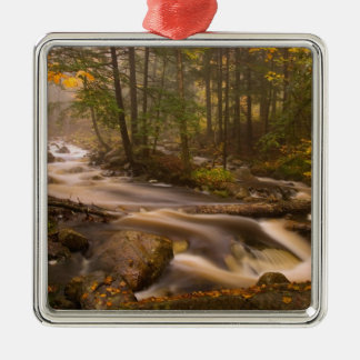 USA, Vermont, East Arlington, Flowing streams 2 Christmas Ornament