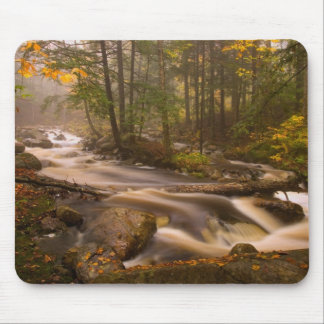 USA, Vermont, East Arlington, Flowing streams 2 Mouse Pad