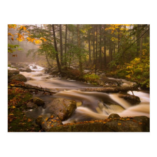 USA, Vermont, East Arlington, Flowing streams 2 Postcard