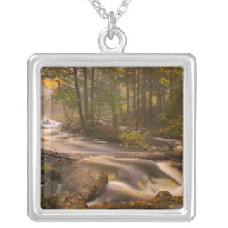 USA, Vermont, East Arlington, Flowing streams 2 Silver Plated Necklace