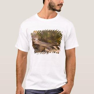 USA, Vermont, East Arlington, Flowing streams 2 T-Shirt