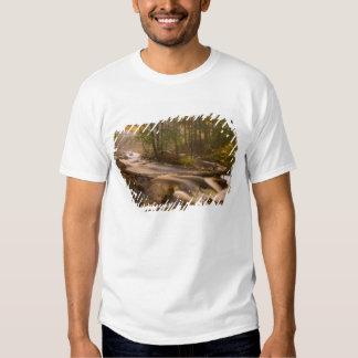 USA, Vermont, East Arlington, Flowing streams 2 Tee Shirt