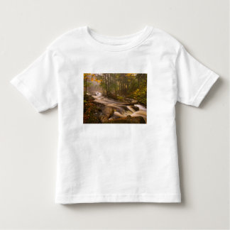 USA, Vermont, East Arlington, Flowing streams 2 Toddler T-Shirt