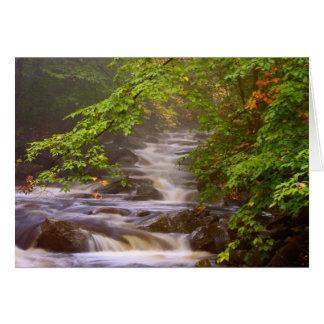 USA, Vermont, East Arlington, Flowing streams Card