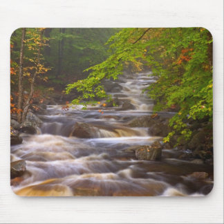 USA, Vermont, East Arlington, Flowing streams Mouse Mat