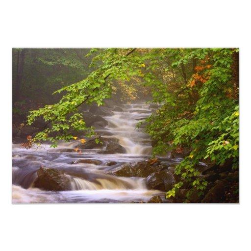 USA, Vermont, East Arlington, Flowing streams Photograph