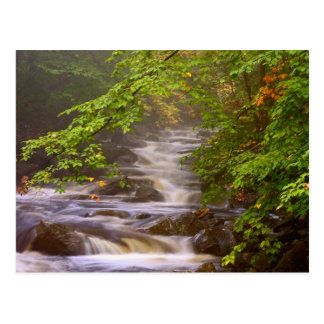 USA, Vermont, East Arlington, Flowing streams Postcard