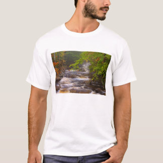 USA, Vermont, East Arlington, Flowing streams T-Shirt