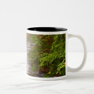 USA, Vermont, East Arlington, Flowing streams Two-Tone Coffee Mug