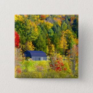USA, Vermont. Fall foilage along Highway 100. 15 Cm Square Badge