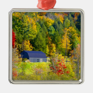 USA, Vermont. Fall foilage along Highway 100. Christmas Ornament
