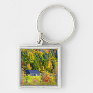 USA, Vermont. Fall foilage along Highway 100. Key Ring